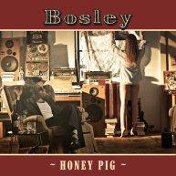 Honey Pig